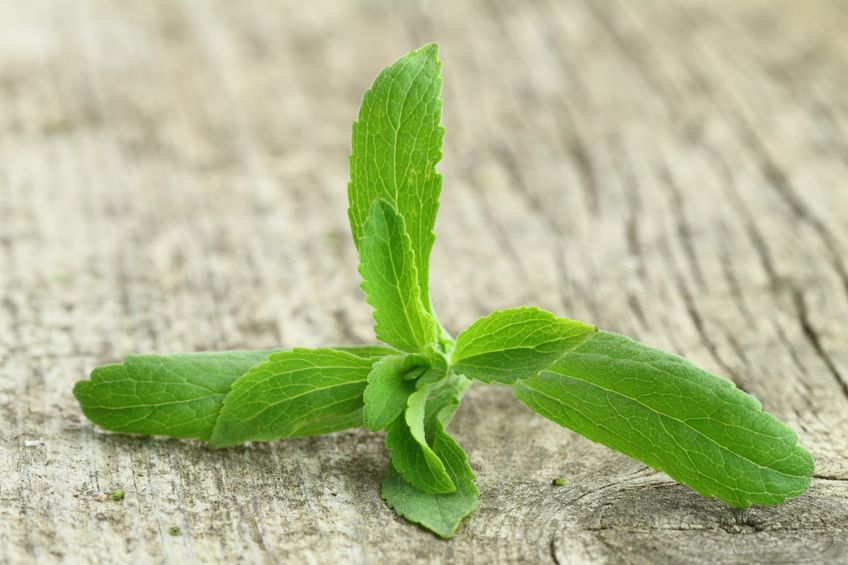 Best Stevia Sweetener 2020: Shopping Guide & Review