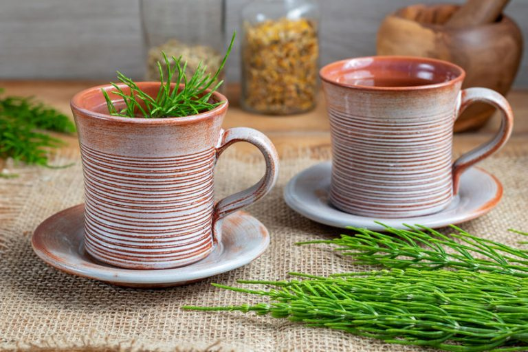 Horsetail in a mug